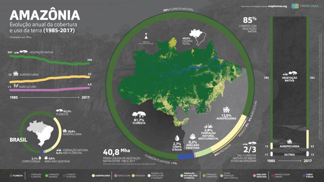 Uso de la tierra en Amazonia (Imagen: MapBiomas)
