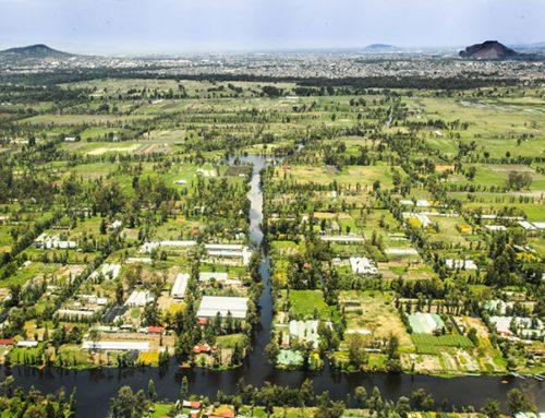 México: Lanzan reto de resiliencia y adaptación basada en ecosistemas frente al Cambio Climático