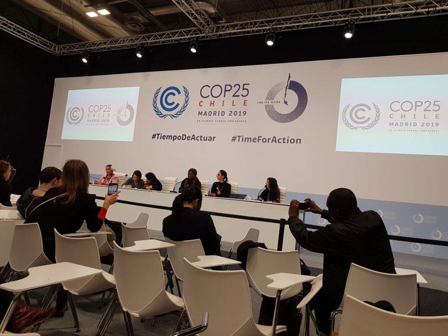 Conferencia de prensa de Women's Earth and Climate Action Network (WECAN)