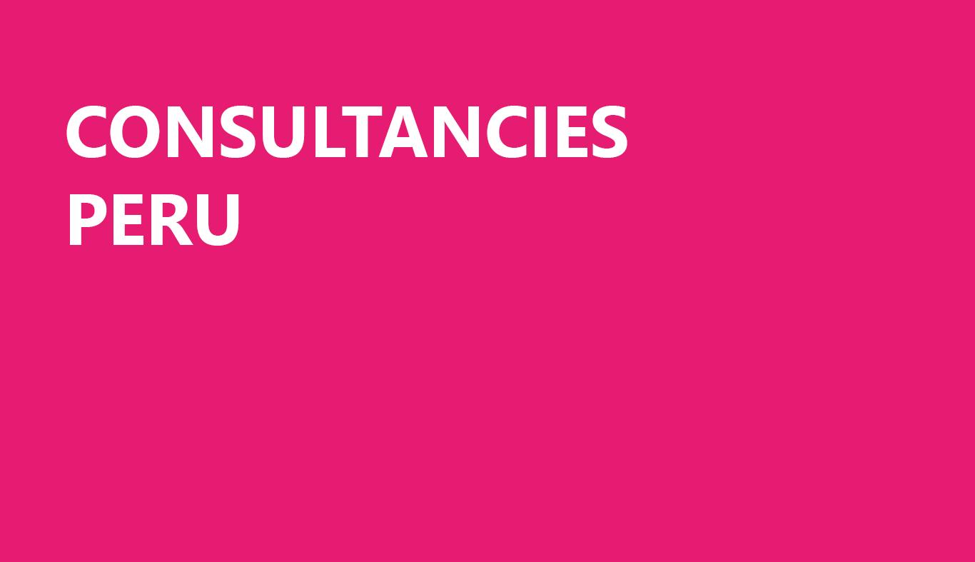 Consultancies-Peru